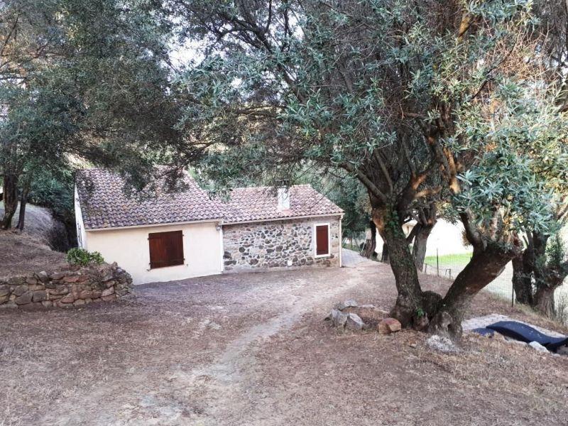 Affitto Casa 116438 Propriano