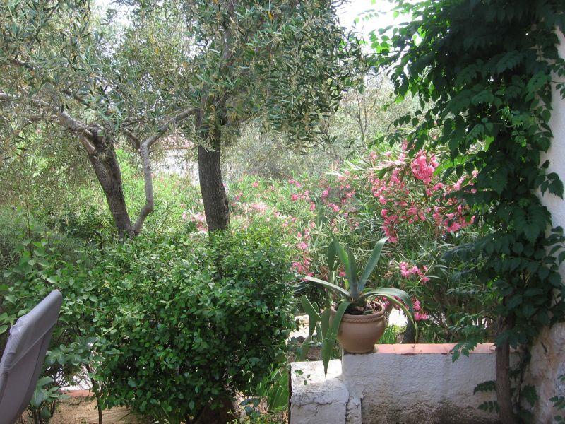 Giardino Affitto Villa  92322 Rosas