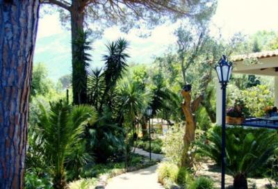 Giardino Affitto Villa  100021 Forio
