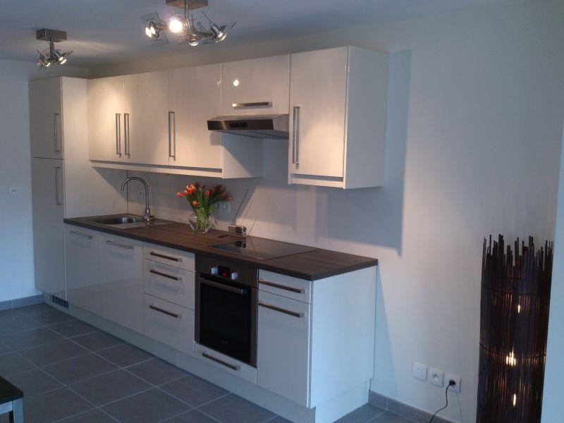 Cucina all'americana Affitto Appartamento 110536 Thonon Les Bains
