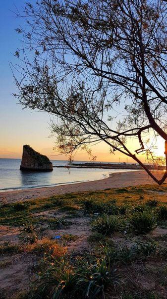 Spiaggia Affitto Casa 73207 Pescoluse