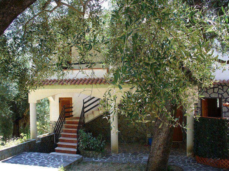 Entrata Affitto Appartamento 89629 Pisciotta