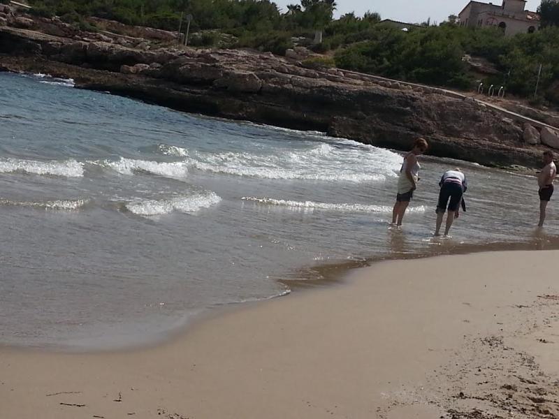 Spiaggia Affitto Appartamento 64059 La Ametlla de Mar