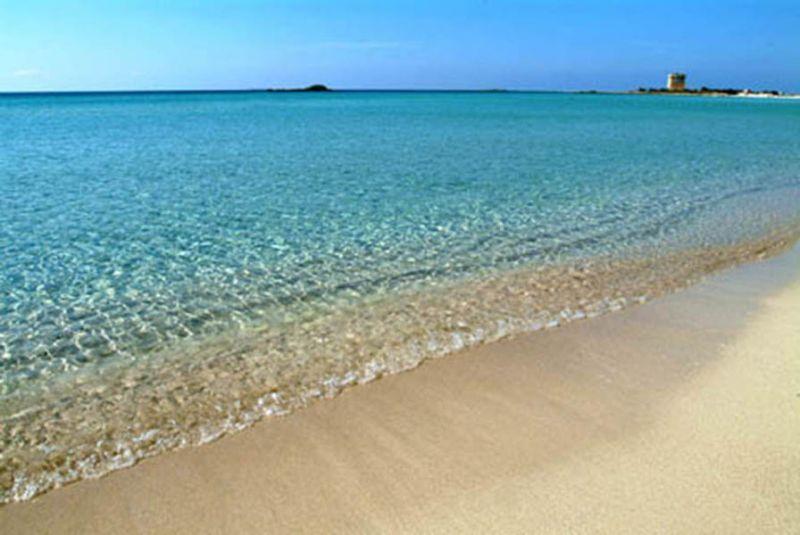 Spiaggia Affitto Monolocale 104756 Porto Cesareo