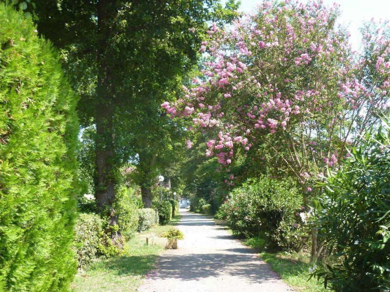 Altra vista Affitto Villa  117632 Moriani Plage