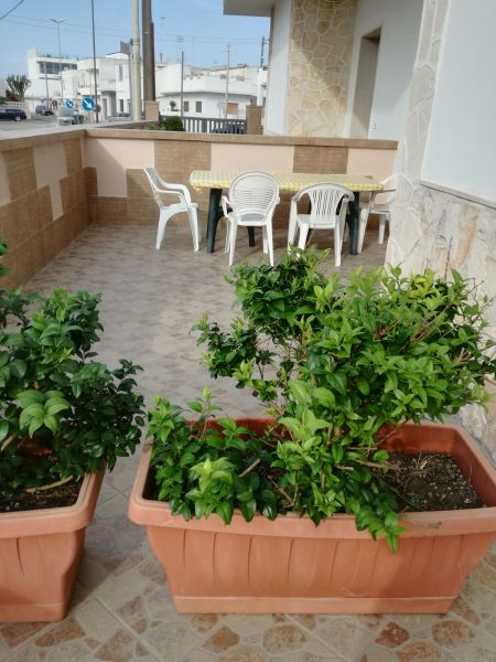 Giardino Affitto Appartamento 117731 San Foca