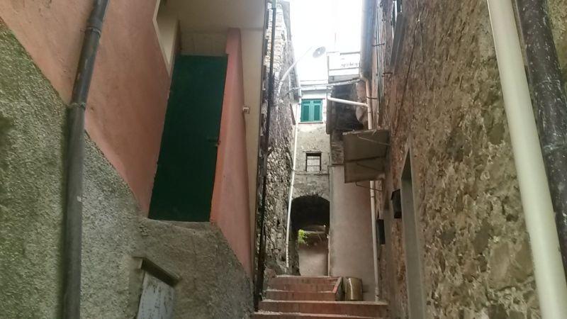 Vista nelle vicinanze Affitto Appartamento 111038 Levanto