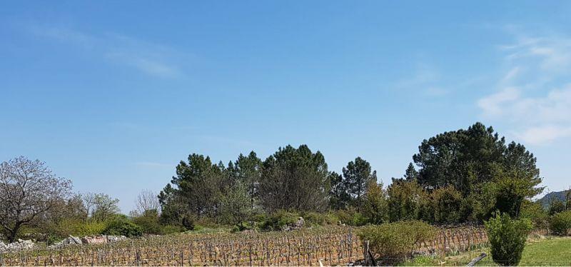 Vista dal terrazzo Affitto Casa 119354 Les Vans