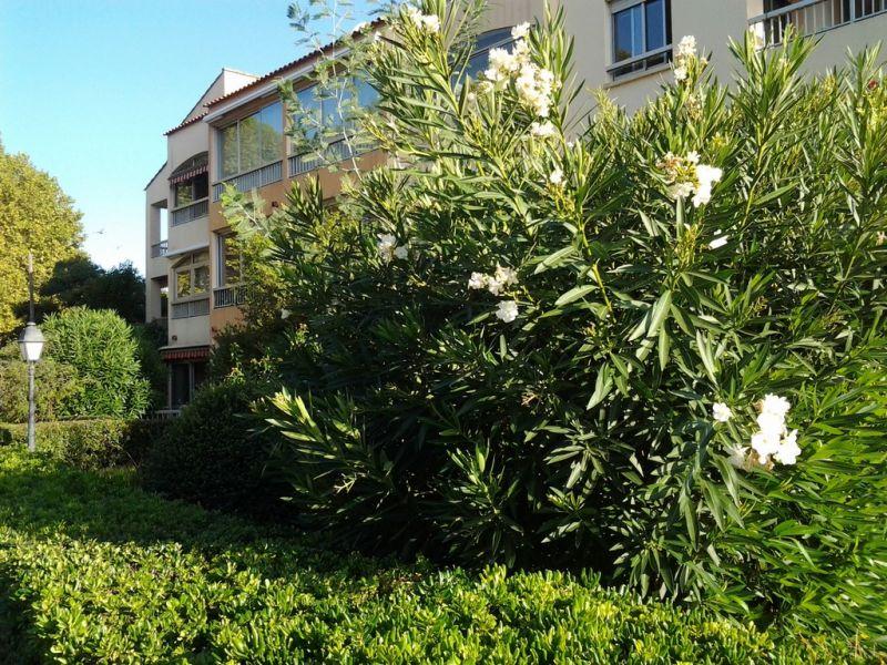 Vista esterna della casa vacanze Affitto Monolocale 84869 Saint Mandrier sur Mer