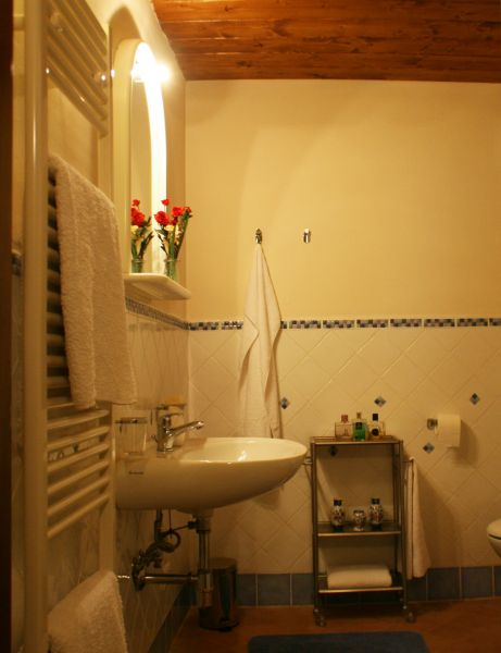 Bagno Affitto Agriturismo 84892 Siena