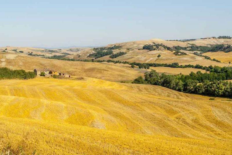 Affitto Agriturismo 84892 Siena