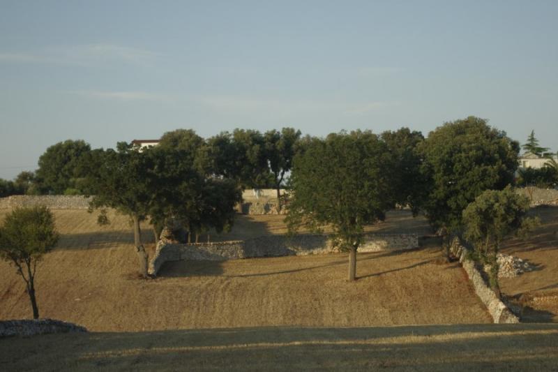 Vista dalla casa vacanze Affitto Alloggio insolito 85263 Martina Franca