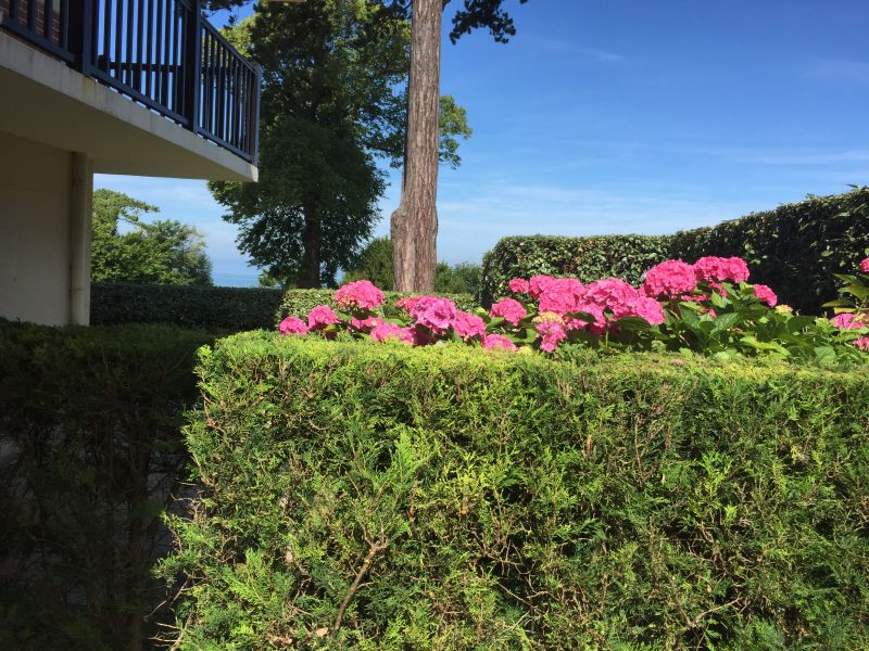 Vista dal terrazzo Affitto Appartamento 112240 Trouville sur Mer
