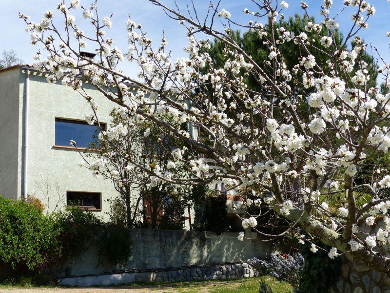 Vista esterna della casa vacanze Affitto Monolocale 115684 Ceret