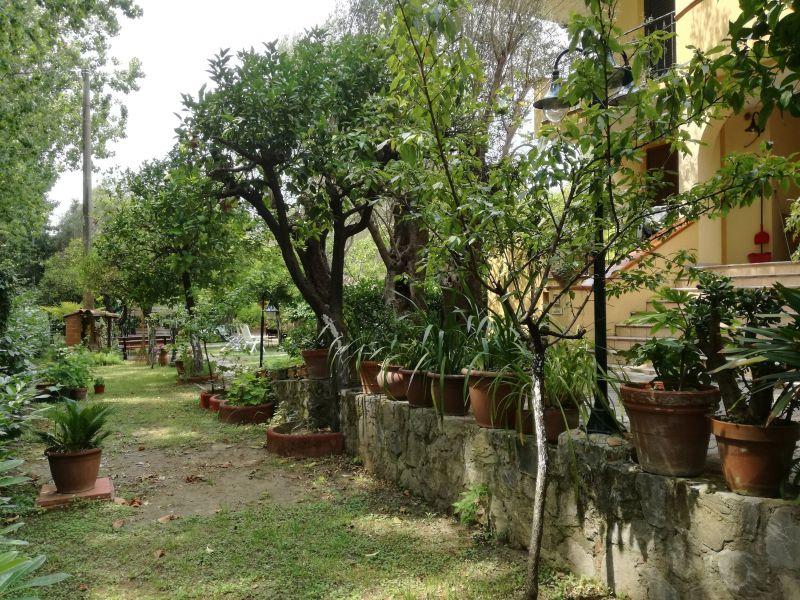 Giardino Affitto Bungalow 76054 Policastro Bussentino
