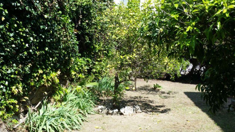 Giardino Affitto Villa  100556 Golfe Juan