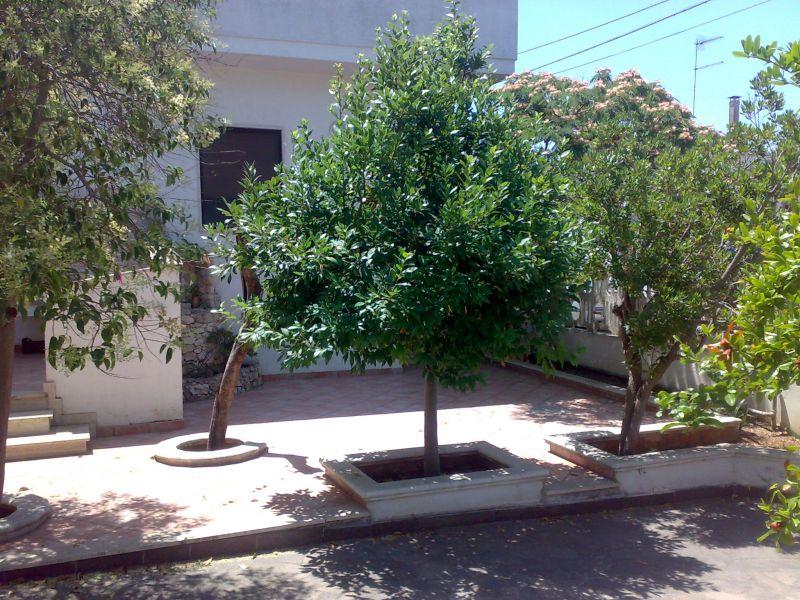 Affitto Appartamento 105560 Gallipoli