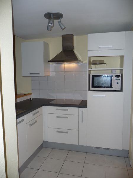 Angolo cottura Affitto Monolocale 108306 Thonon Les Bains