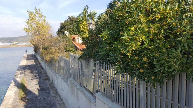 Vista esterna della casa vacanze Affitto Villa  116100 Sperlonga