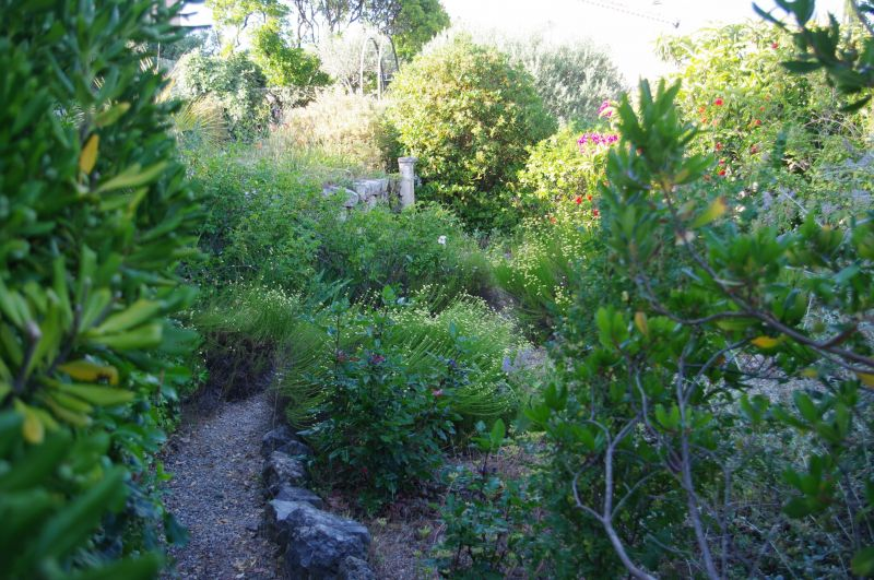 Giardino Affitto Villa  117687 Draguignan