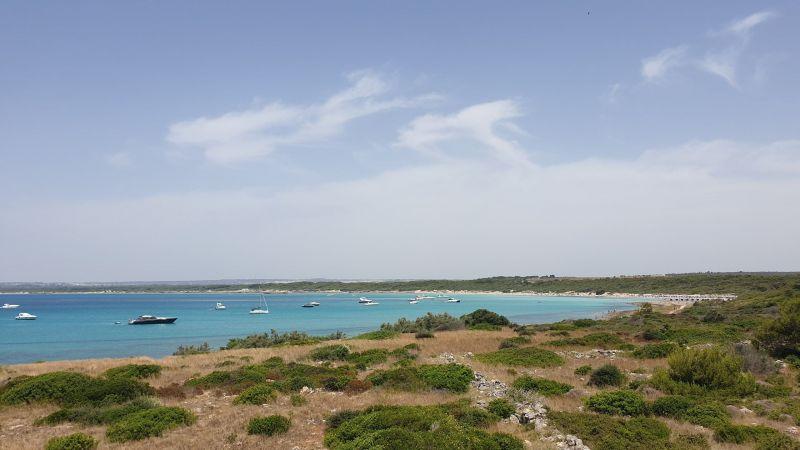 Vista nelle vicinanze Affitto Villa  118004 Gallipoli