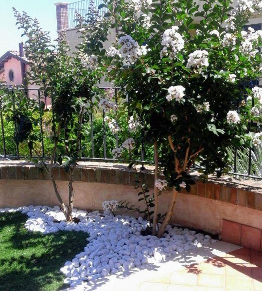 Affitto Appartamento 119599 Tortoreto