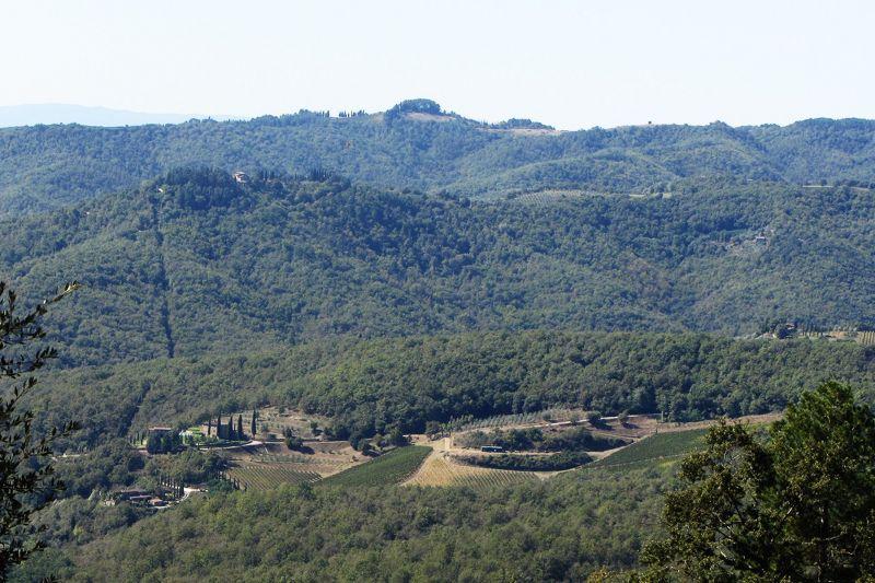 Vista dalla casa vacanze Affitto Villa  75874 Siena