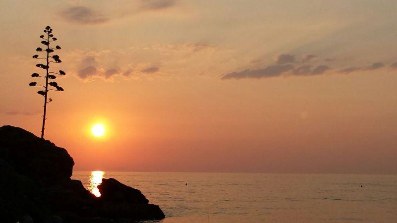 Spiaggia Affitto Appartamento 77662 Rio nell'Elba