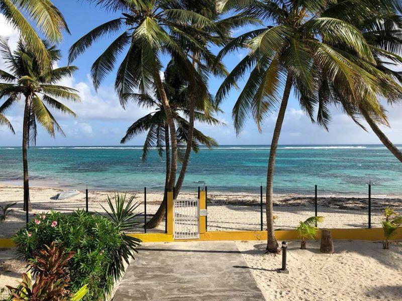 Spiaggia Affitto Appartamento 73124 Sainte Anne (Guadalupa)