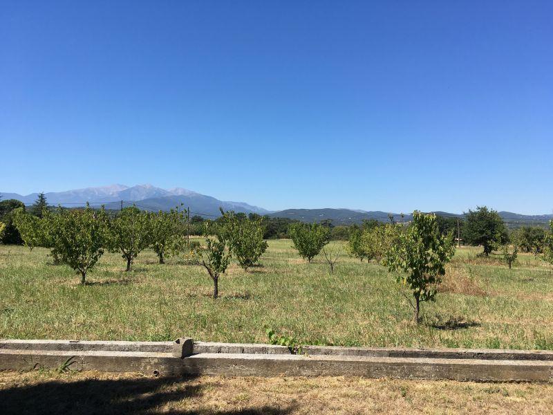 Vista dal terrazzo Affitto Villa  113135 Ceret