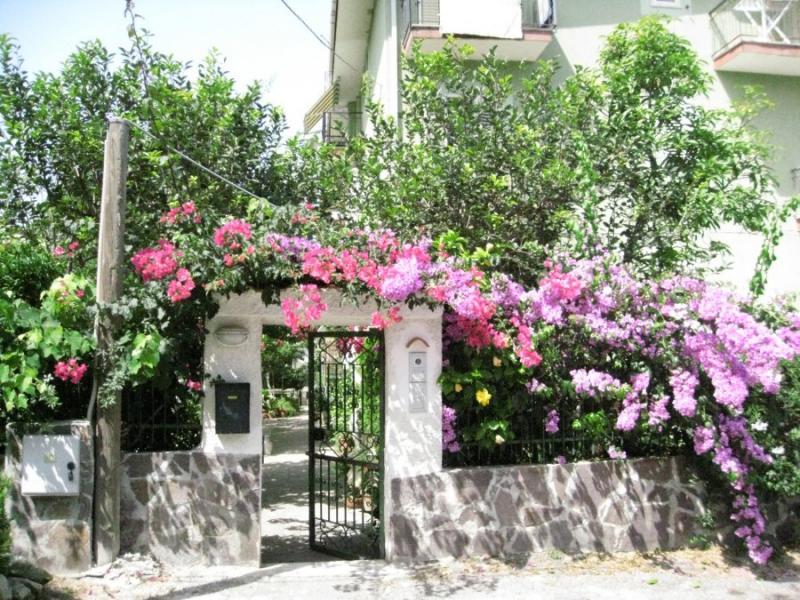Entrata Affitto Appartamento 68556 Tropea