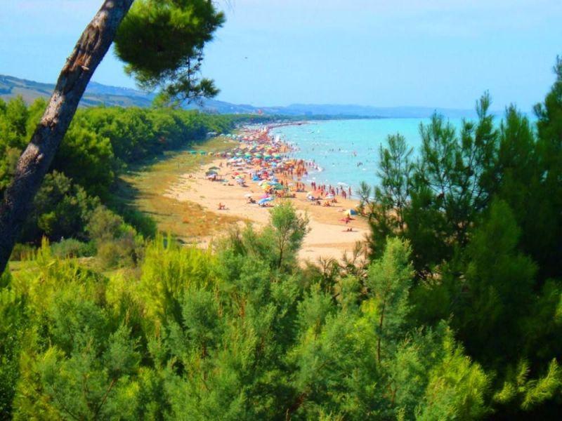 Spiaggia Affitto Appartamento 75650 Pineto