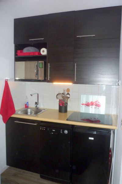Angolo cottura Affitto Appartamento 87874 Risoul 1850