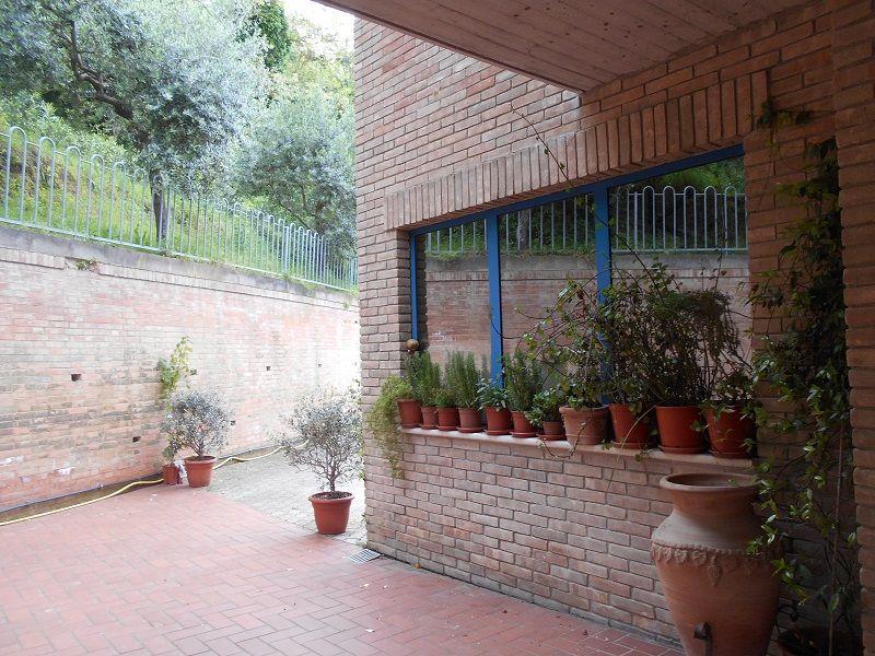 Veranda Affitto Appartamento 90461 Cupra Marittima