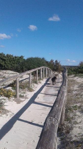 Spiaggia Affitto Villa  104522 Ugento - Torre San Giovanni