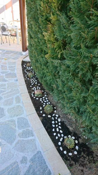 Giardino Affitto Villa  117020 Alassio