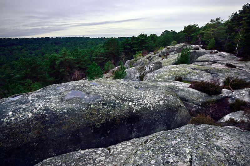 Altra vista Affitto Villa  76953 Fontainebleau