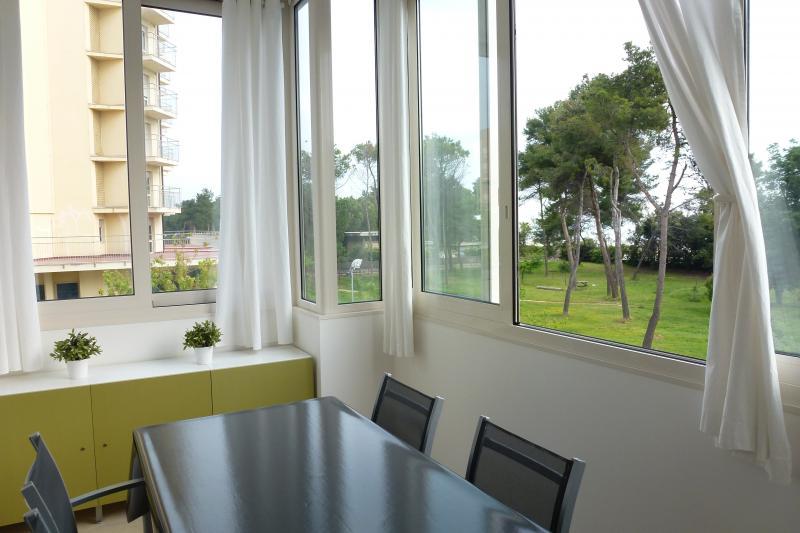 Veranda Affitto Appartamento 87229 Pescara