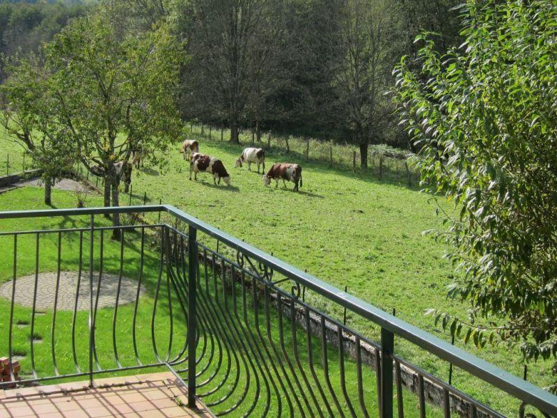 Vista dal balcone Affitto Agriturismo 113029 Salins les Bains