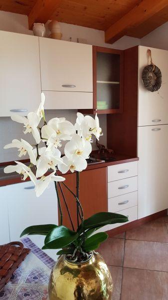 Soggiorno Affitto Appartamento 113526 Vieste