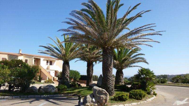 Affitto Appartamento 118632 Santa Teresa di Gallura