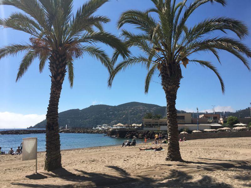 Spiaggia Affitto Monolocale 67791 Mandelieu la Napoule