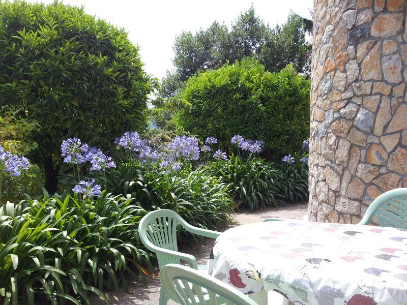 Terrazzo Affitto Appartamento 80731 Cannes