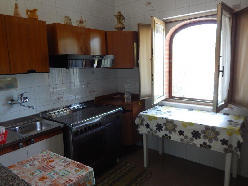 Cucina all'americana Affitto Appartamento 109901 San Menaio