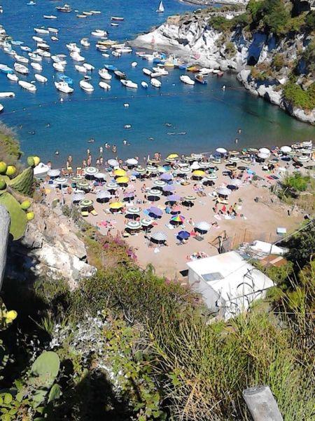 Affitto Villa  113425 Ponza