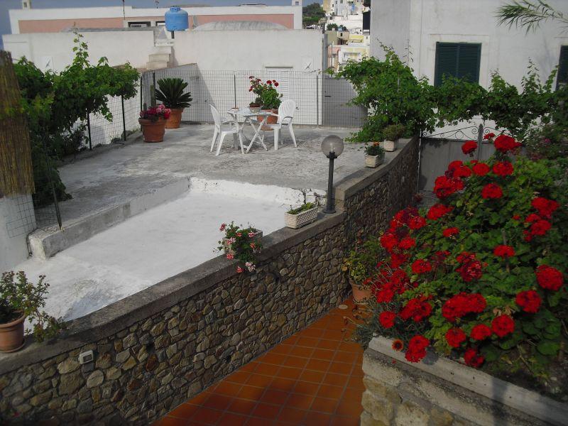 Giardino Affitto Villa  113425 Ponza