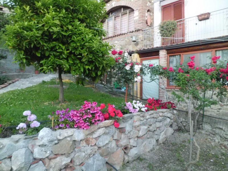 Giardino Affitto Appartamento 118281 Palinuro