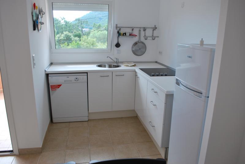 Angolo cottura Affitto Appartamento 63813 Porto Vecchio