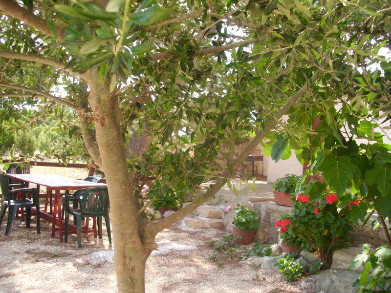 Cortile Affitto Casa rupestre 77543 Ragusa