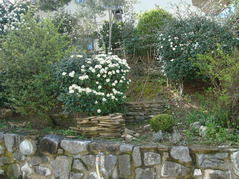 Giardino Affitto Villa  82021 Cassis
